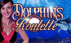 Live Dolphins Roulette