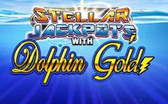 Dolphins Gold Steller Jackpots
